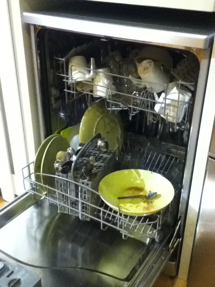 "You might wonder, ""Who the fuck put this in the dishwasher?"""